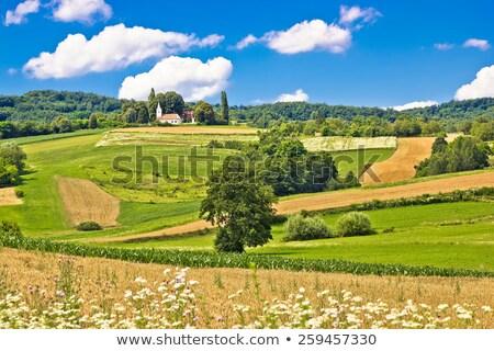Idyllisch landelijk Kroatië dorp kerk luchtfoto Stockfoto © xbrchx