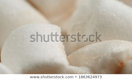 Tasty homemade christmas hot chocolate or cocoa with marshmellows Stock photo © dash