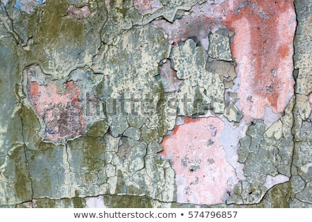 Red house with bad condition Stock photo © colematt