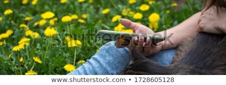 Lány ül park vonzó lány hosszú barna haj Stock fotó © your_lucky_photo