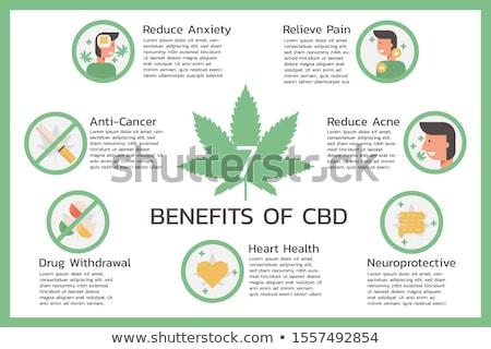 Medical cannabis and cannabidiol oil vector illustrations set. Stock photo © RAStudio