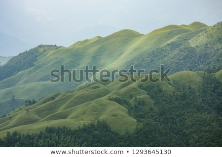 Grassy mountain tops in China Stock photo © Juhku