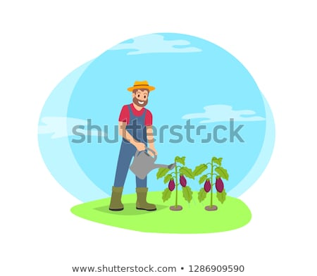 Farmer with Watering Can Working on Farm Cartoon Stock photo © robuart