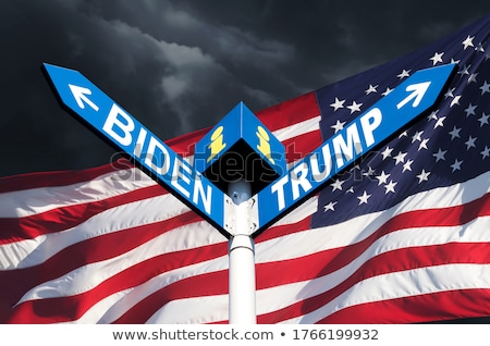 Presidente bandeira americana ilustração homem fundo arte Foto stock © colematt