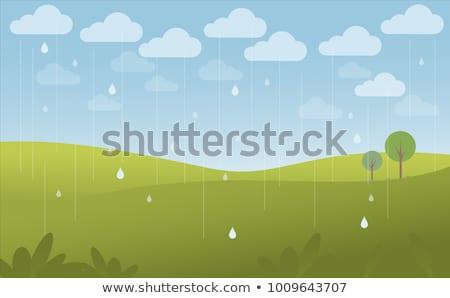 лес · сцена · дождливый · день · иллюстрация · небе - Сток-фото © colematt
