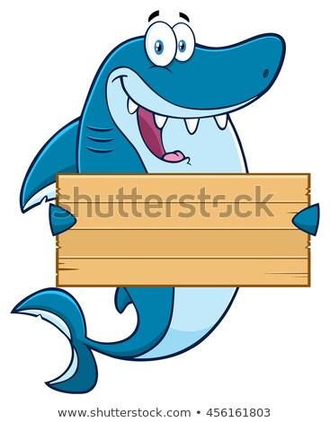 Cartoon illustration of a shark holding a Sign Stock photo © bennerdesign