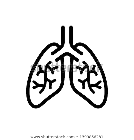 Lungs icon on a white background Stock photo © Imaagio
