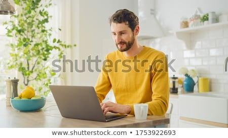 Hase arbeiten Laptop Sitzung Tabelle eingeben Stock foto © robuart