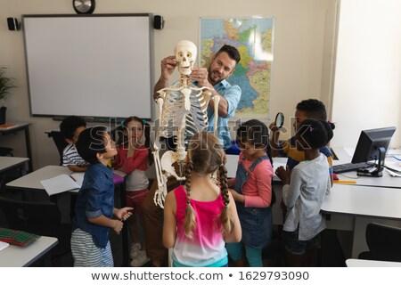biologie · student · leraar · middelbare · school · slide · geïsoleerd - stockfoto © wavebreak_media