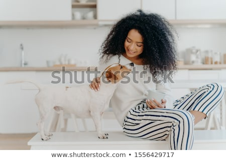 Delighted curly woman with cheerful expression poses with jack russell terrier dog at home, drinks a Stock photo © vkstudio