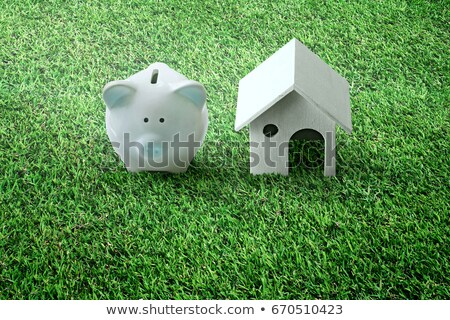 Piggy Bank With Real Banknotes Stock photo © albund