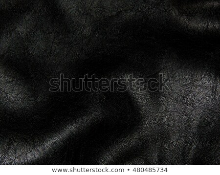 Black leather finished furniture Stock photo © nuttakit