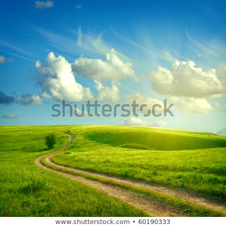 green landscape with hill tree road and flowers stock photo © wad