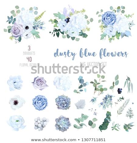 bouquet of blue flowers stock photo © tottoro