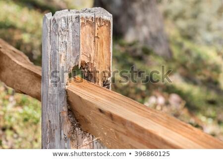 Rail hek shot naar beneden te kijken houten Stockfoto © mybaitshop