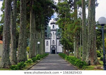 ストックフォト: 有名な · 教会 · 階段 · ポルトガル · 階段 · 地方自治体の