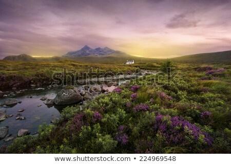 Színes Skót-Felföld gyönyörű díszlet nyár idő Stock fotó © prill