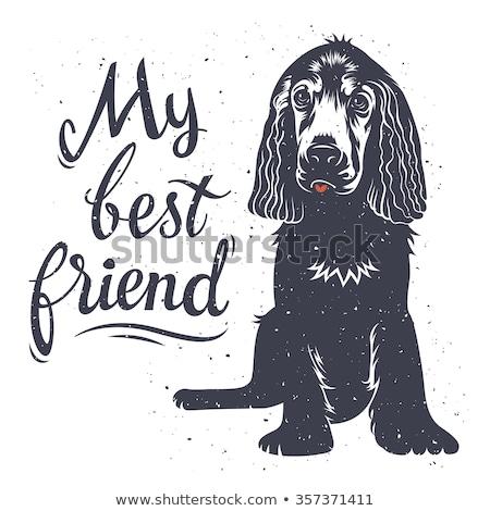 Meu melhor amigo cão belo adolescente leitura Foto stock © cynoclub