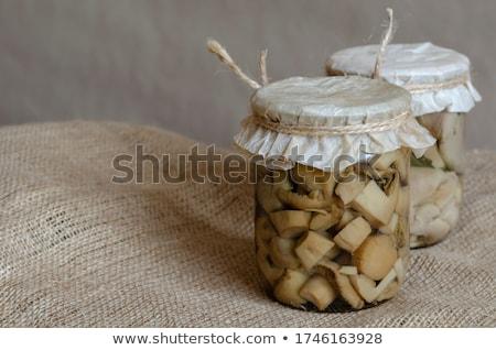 Régi papír receptek fűszer zsákvászon közelkép papír Stock fotó © oly5