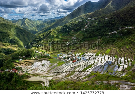 hegyek · öreg · törött · kerítés · Fülöp-szigetek · fa - stock fotó © joyr