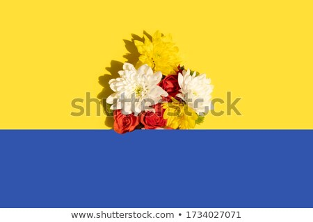 Contrasting composition - yellow flowers on blue background Stock photo © pzaxe