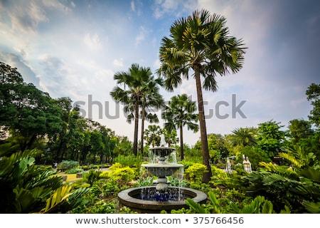 Manila çeşme park metro su şehir Stok fotoğraf © joyr
