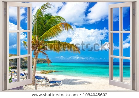 beach view by the window stock photo © benchart
