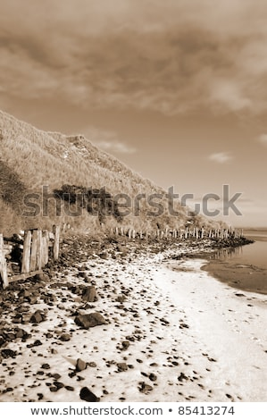 erosion protection in irelands winter Stock photo © morrbyte
