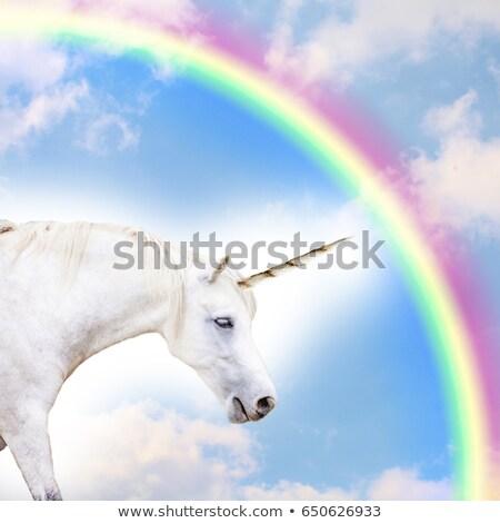 Fantástico caballo dibujo pequeño Foto stock © SKVORTSOVA