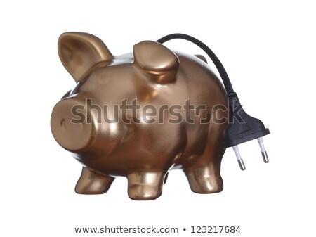 Golden Piggybank With Wire Stock fotó © pterwort