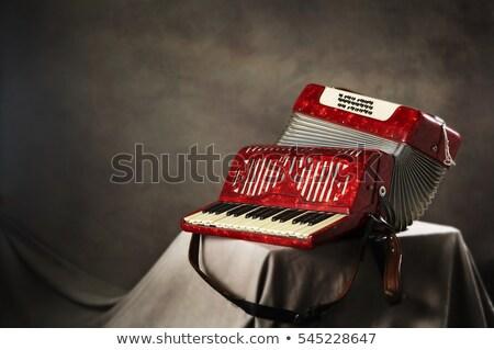 Oude accordeon houten mondharmonica witte onderwijs Stockfoto © smuki