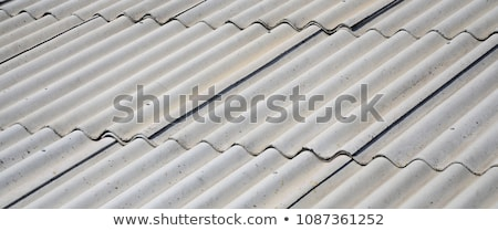 Corrugated Asbestos Cement Roof Stock photo © stevanovicigor