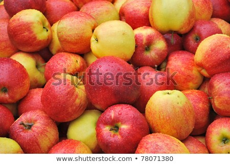 Yummy pile of apples in a market stall Stock photo © Lekchangply