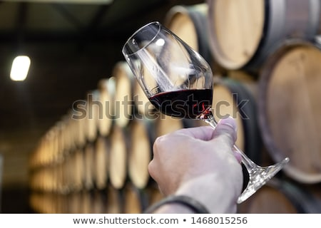 verre · vin · rouge · chêne · illustration · cave · à · vin - photo stock © Porteador