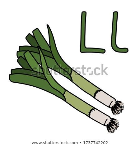 L betű póréhagyma rajz illusztráció nagybetű ábécé Stock fotó © izakowski