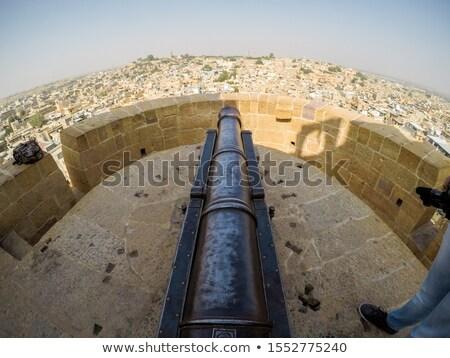 古い 大砲 屋根 砦 インド 市 ストックフォト © Mikko