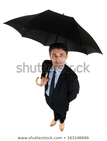 Dapper businessman sheltering under an umbrella Stock photo © smithore
