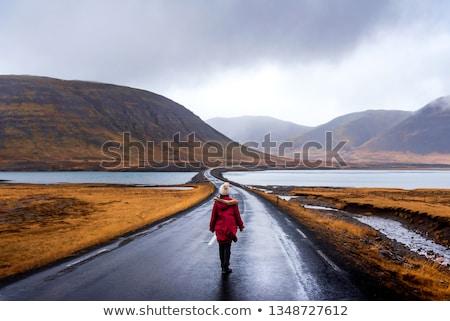 weg · eiland · IJsland · meer · bergen · winter - stockfoto © compuinfoto