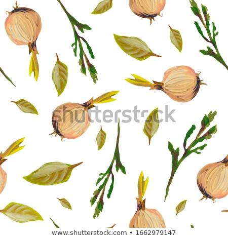 sem · costura · laranja · fresco · peras · abstrato · isolado - foto stock © boroda
