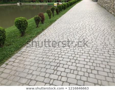 Granite cobblestoned pavement background Stock photo © Elenarts
