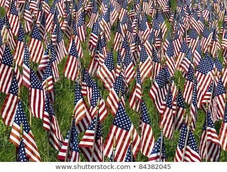 EUA Iraque miniatura bandeiras isolado branco Foto stock © tashatuvango
