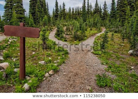 sentier · signes · arbre · montagnes · Pologne · République · tchèque - photo stock © pixpack