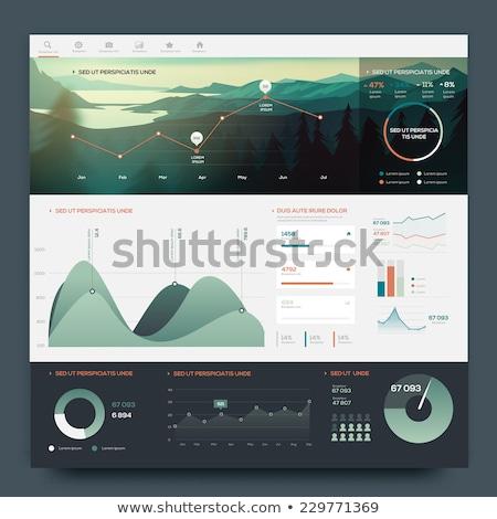 Business Team Infographics Elements Stock photo © vectorikart