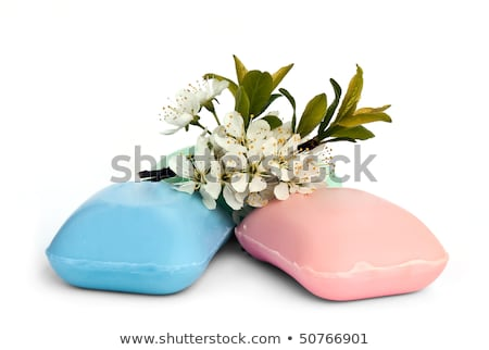 the pieces of soap with a sprig of cherry blossoms stock photo © g215