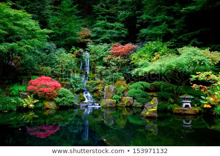 waterfall at japanese garden stock photo © davidgn