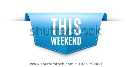 Hétvége ajánlat kék vektor ikon gomb Stock fotó © rizwanali3d