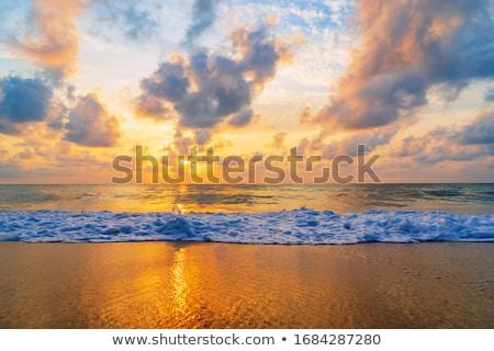 tengerparti · nyár · nap · esély · öböl · park - stock fotó © petrmalyshev