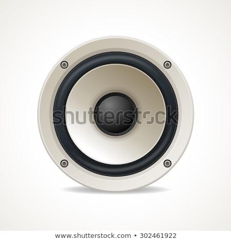 Groot luid sprekers geïsoleerd witte technologie Stockfoto © shutswis