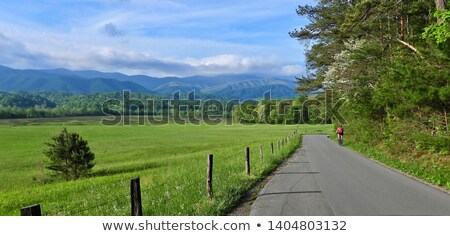 Cades Cove Stock photo © tmainiero