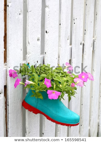 öreg · gumicsizma · virágzó · virágok · gyerekek · nyári · virágok - stock fotó © vapi
